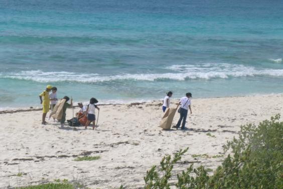 The Parque Nacional Marino Arrecifes de Cozumel in Mexico organized the cleanup of 10 of the park's beaches.